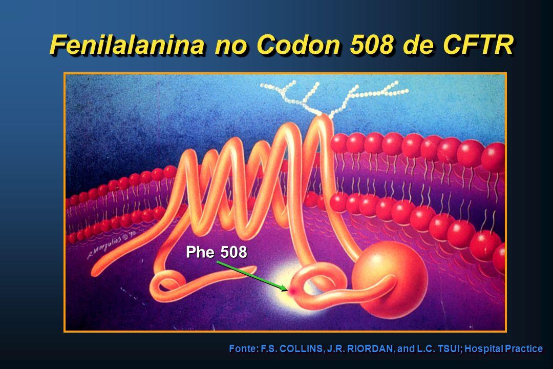 Fenilalanina no Codon 508 de CFTR Fonte: F.S. COLLINS, J.R. RIORDAN, and L.C. TSUI; Hospital Practice Phe 508