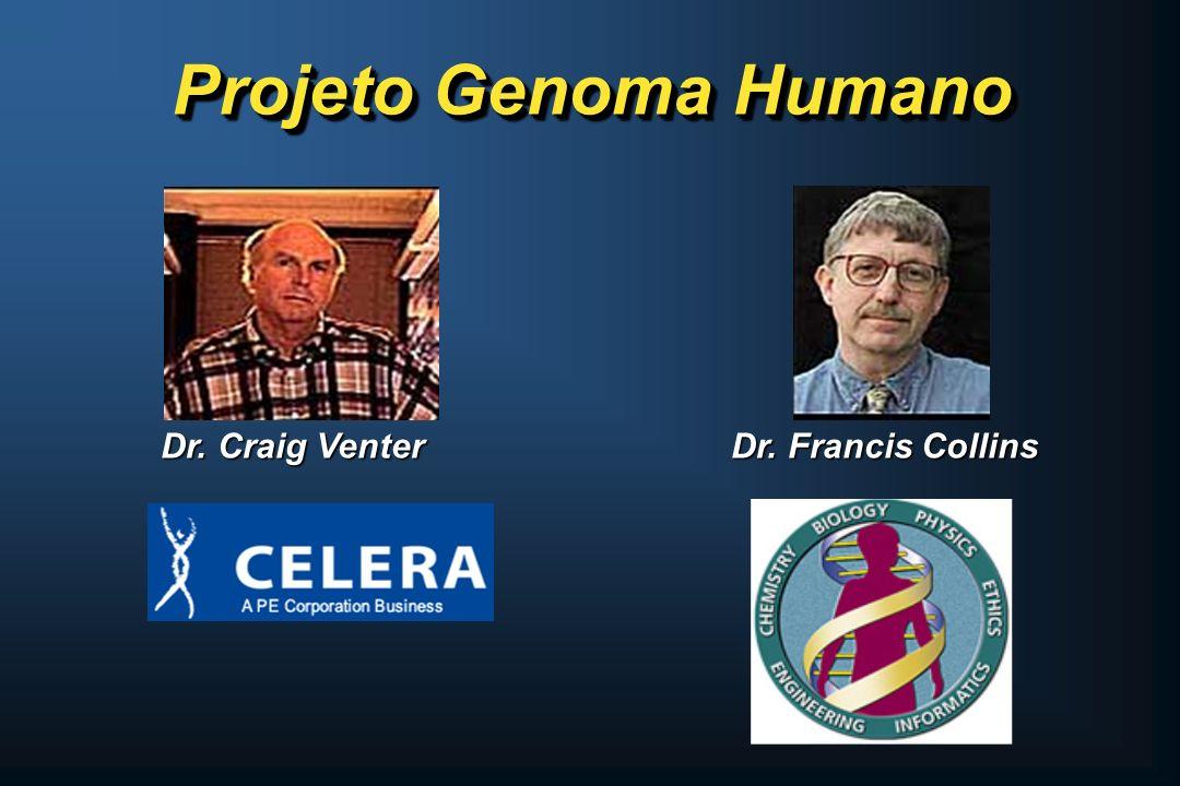 Projeto Genoma Humano Dr. Craig Venter Dr. Francis Collins