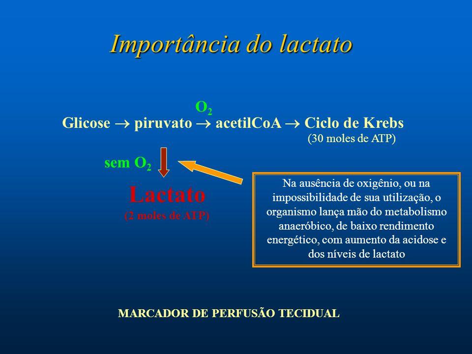 Importância do lactato Glicose piruvato acetilCoA Ciclo de Krebs Lactato (2 moles de ATP) O2O2 Na ausência de oxigênio, ou na impossibilidade de sua u