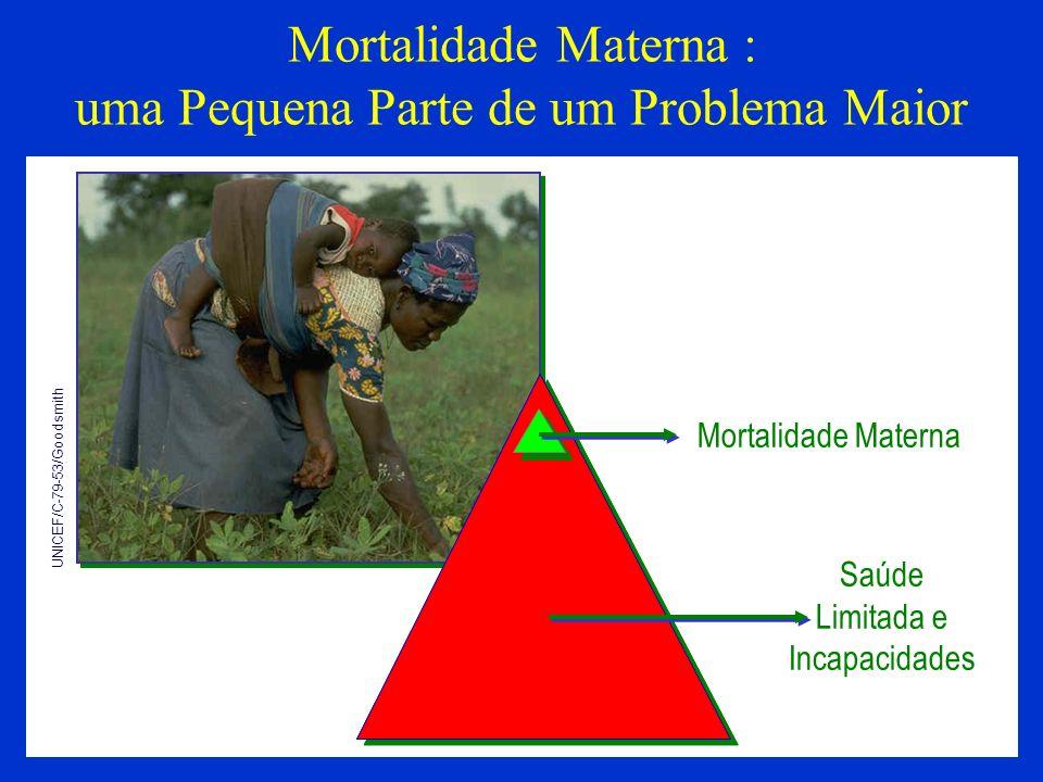 Mortalidade Materna : uma Pequena Parte de um Problema Maior UNICEF/C-79-53/Goodsmith Mortalidade Materna Saúde Limitada e Incapacidades