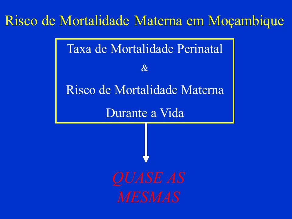 Taxa de Mortalidade Perinatal & Risco de Mortalidade Materna Durante a Vida QUASE AS MESMAS Risco de Mortalidade Materna em Moçambique