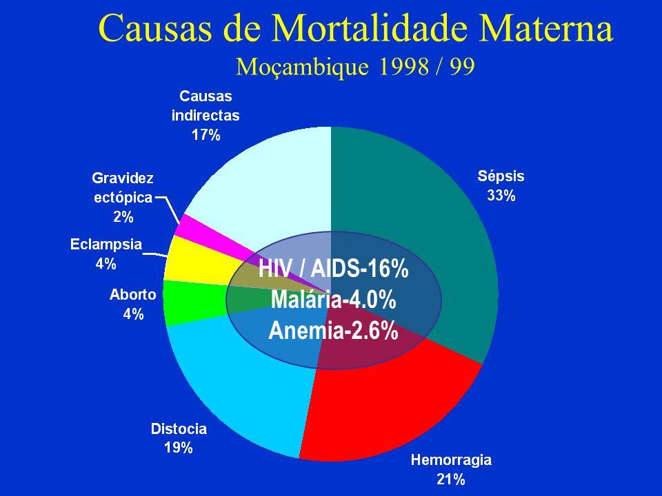 Causas de Mortalidade Materna Moçambique 1998 / 99 HIV / AIDS-16% Malária-4.0% Anemia-2.6%