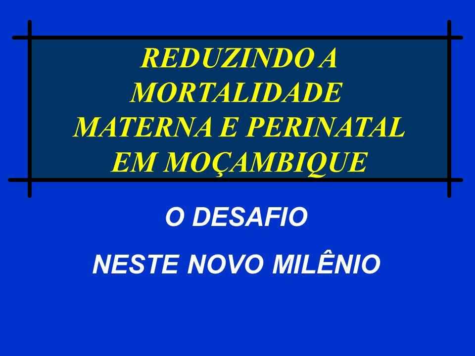 Recomendações (2) Sistema de referência Capacitação das comunidades: - conhecer sinais perigosos - planeamento do parto - organização dos recursos familiares