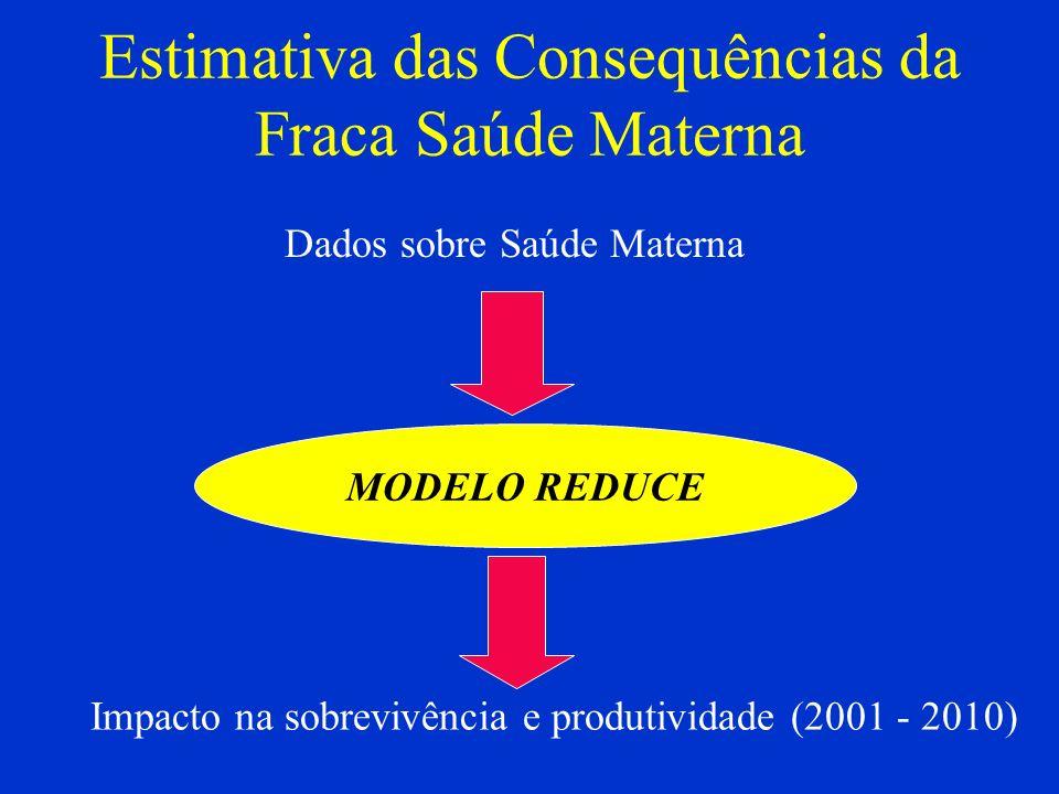 Estimativa das Consequências da Fraca Saúde Materna MODELO REDUCE Impacto na sobrevivência e produtividade (2001 - 2010) Dados sobre Saúde Materna
