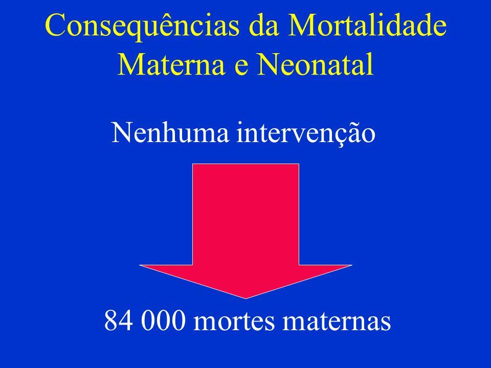 Consequências da Mortalidade Materna e Neonatal Nenhuma intervenção 84 000 mortes maternas