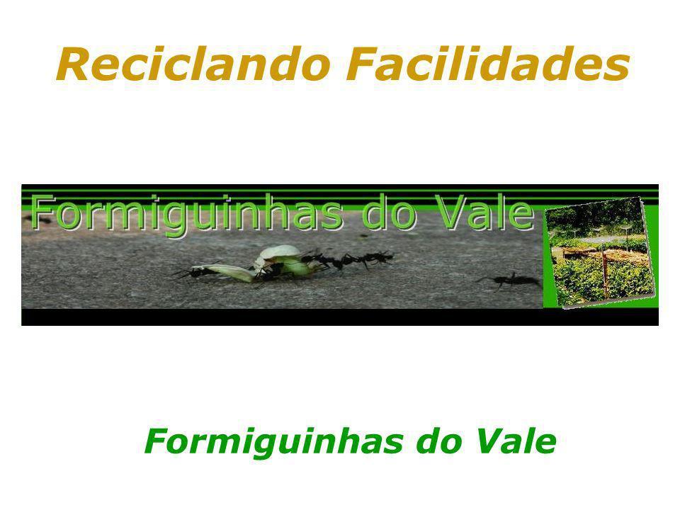 Prof. Hélio L. Costa Jr. Reciclando Facilidades Formiguinhas do Vale