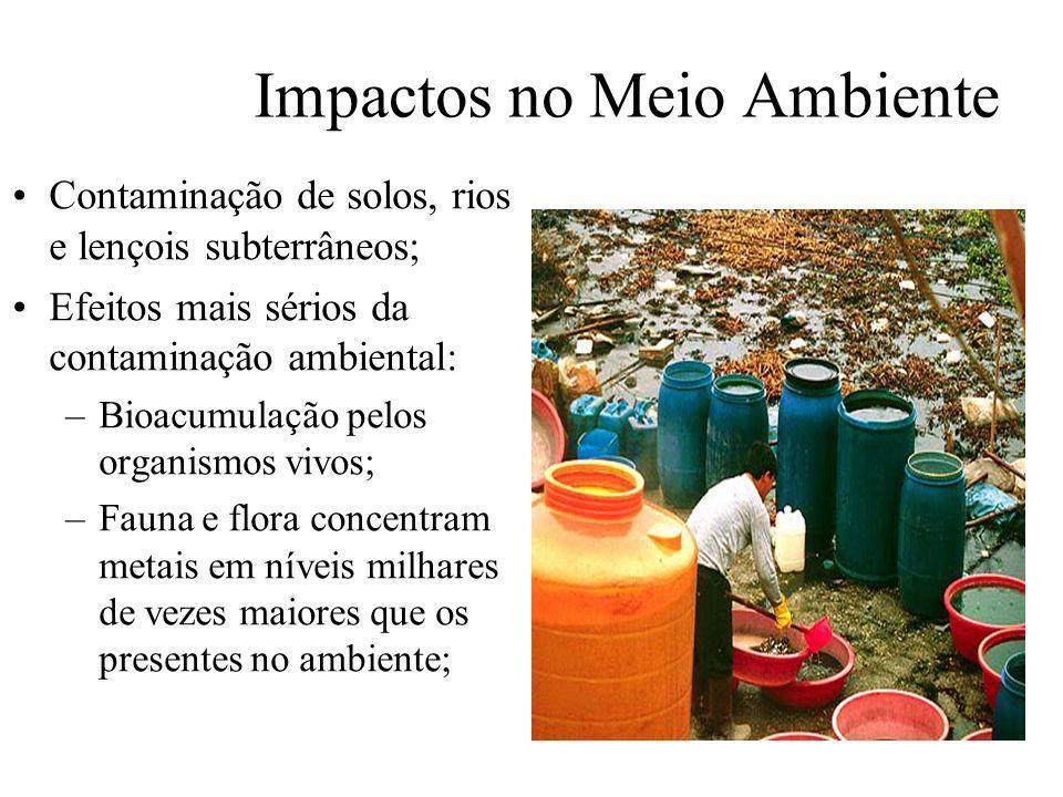 Prof. Hélio L. Costa Jr. Impactos no Meio Ambiente Contaminação de solos, rios e lençois subterrâneos; Efeitos mais sérios da contaminação ambiental: