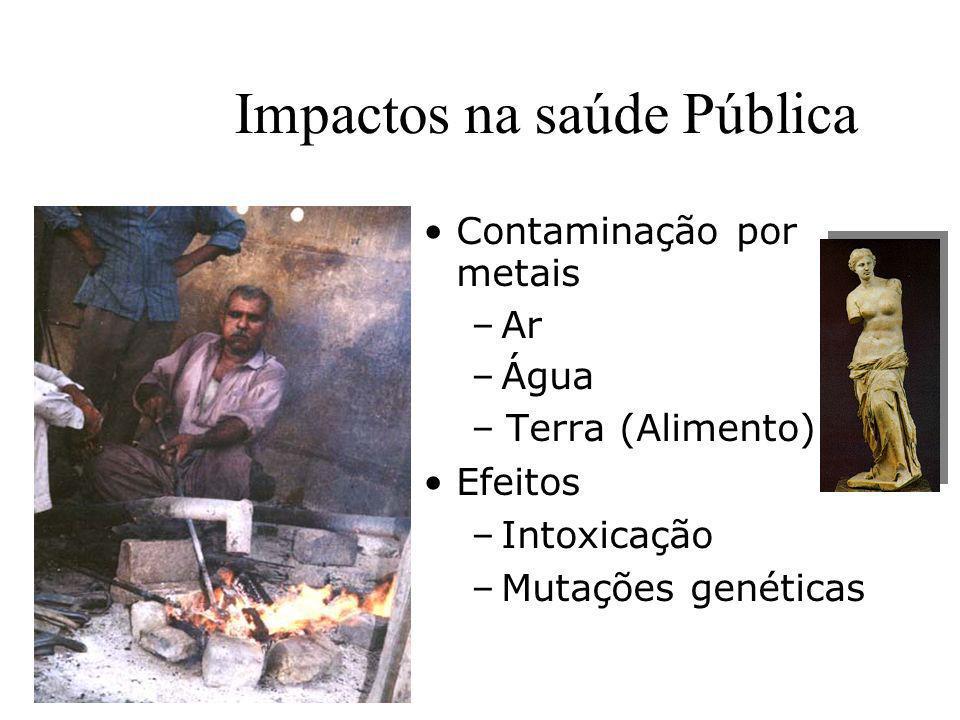 Prof. Hélio L. Costa Jr. Impactos na saúde Pública Contaminação por metais –Ar –Água –Terra (Alimento) Efeitos –Intoxicação –Mutações genéticas