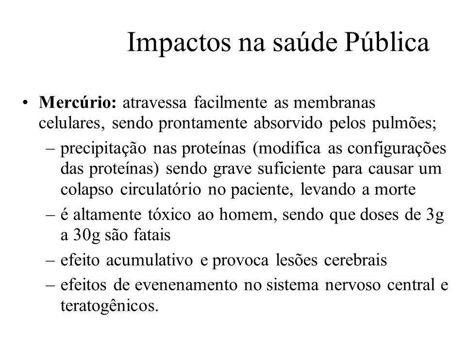 Prof. Hélio L. Costa Jr. Impactos na saúde Pública Mercúrio: atravessa facilmente as membranas celulares, sendo prontamente absorvido pelos pulmões; –