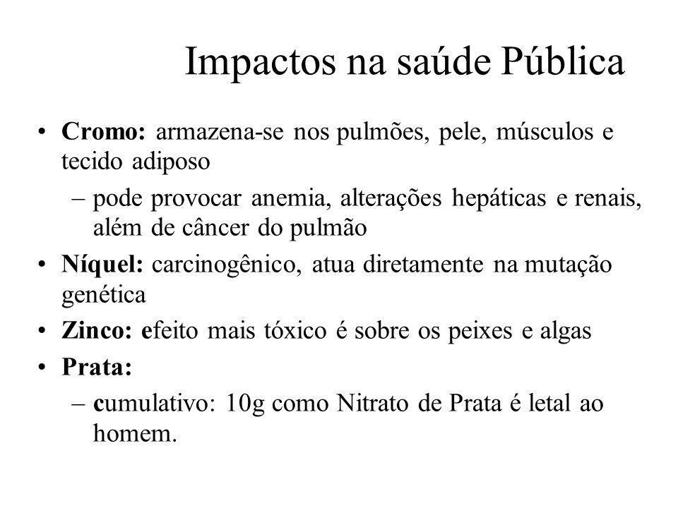 Prof. Hélio L. Costa Jr. Impactos na saúde Pública Cromo: armazena-se nos pulmões, pele, músculos e tecido adiposo –pode provocar anemia, alterações h