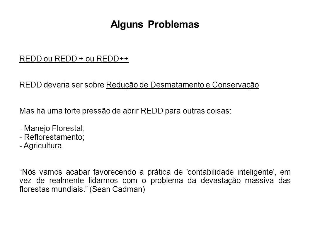 Alguns Problemas REDD ou REDD + ou REDD++ REDD deveria ser sobre Redução de Desmatamento e Conservação Mas há uma forte pressão de abrir REDD para out