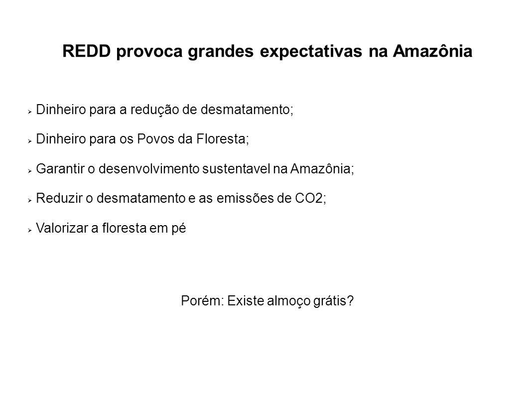 REDD provoca grandes expectativas na Amazônia Dinheiro para a redução de desmatamento; Dinheiro para os Povos da Floresta; Garantir o desenvolvimento
