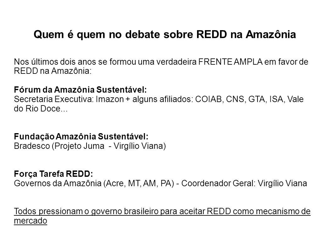 Como REDD poderia funcionar na Amazônia A Redução de Desmatamento: Gera Redução de Emissões de CO2 que Gera créditos que poderiam ser compensados em dinheiro através de Fundos; Mercados voluntários; Mercados com compensação.