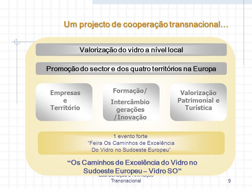Vidro SO - Célula de Coordenação e Animação Transnacional9 Valorização do vidro a nível local Promoção do sector e dos quatro territórios na Europa Em