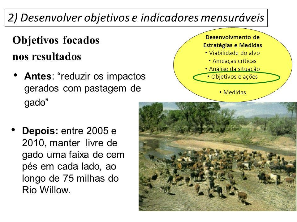 Depois: entre 2005 e 2010, manter livre de gado uma faixa de cem pés em cada lado, ao longo de 75 milhas do Rio Willow. Antes: reduzir os impactos ger