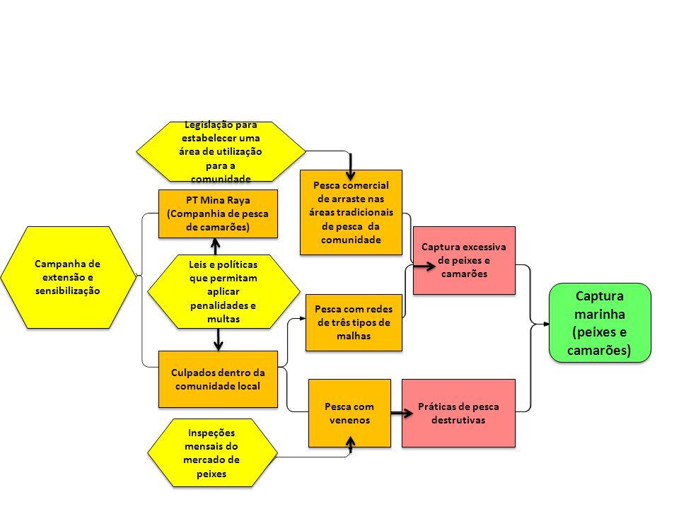 Situação de análise Inspeções mensais do mercado de peixes Campanha de extensão e sensibilização Legislação para estabelecer uma área de utilização pa