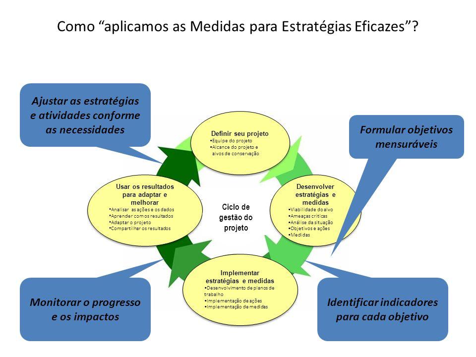 Como aplicamos as Medidas para Estratégias Eficazes? Project Mgmt Cycle Identificar indicadores para cada objetivo Monitorar o progresso e os impactos