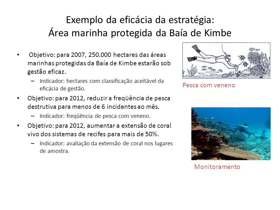Exemplo da eficácia da estratégia: Área marinha protegida da Baía de Kimbe Objetivo: para 2007, 250.000 hectares das áreas marinhas protegidas da Baía