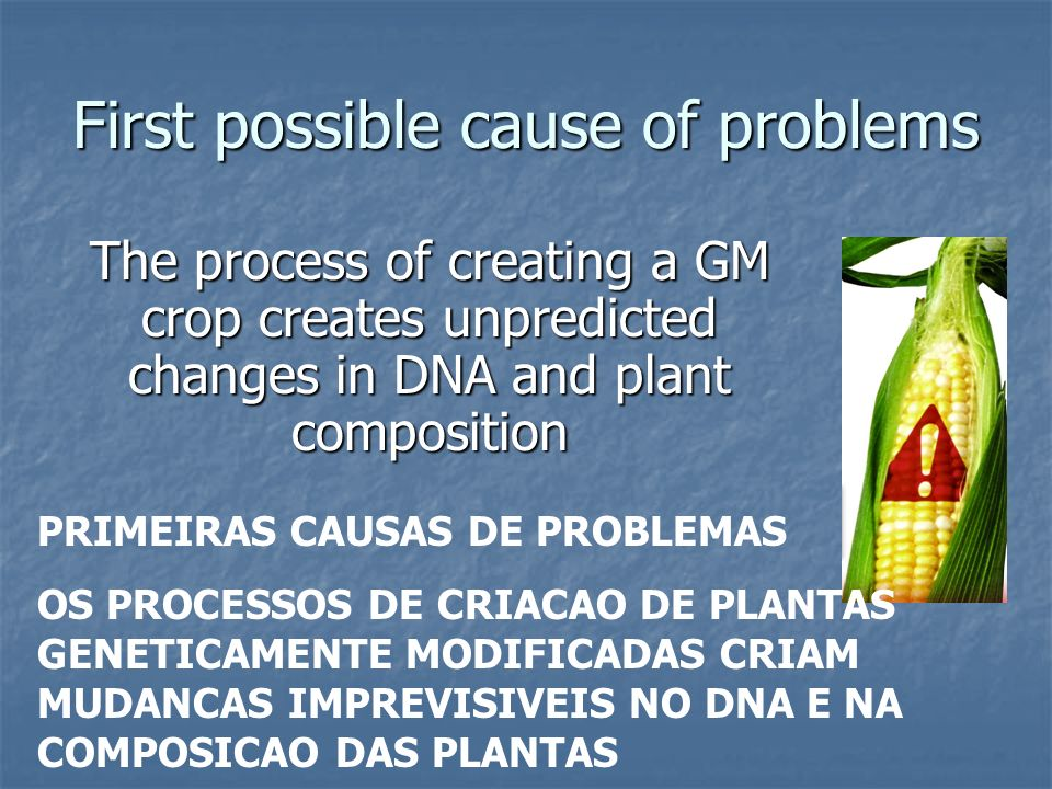 Gene construct CONSTRUÇÃO GENÉTICA promoter Gene for trait (Bt toxin) end Regulatory sequence: on/off switch - often CaMV (virus) ( SEQUÊNCIA REGULATÓRIA: LIGA/DESLIGA -FREQUENTE/ VIRUS CamV) Coding sequence of a gene - e.g.