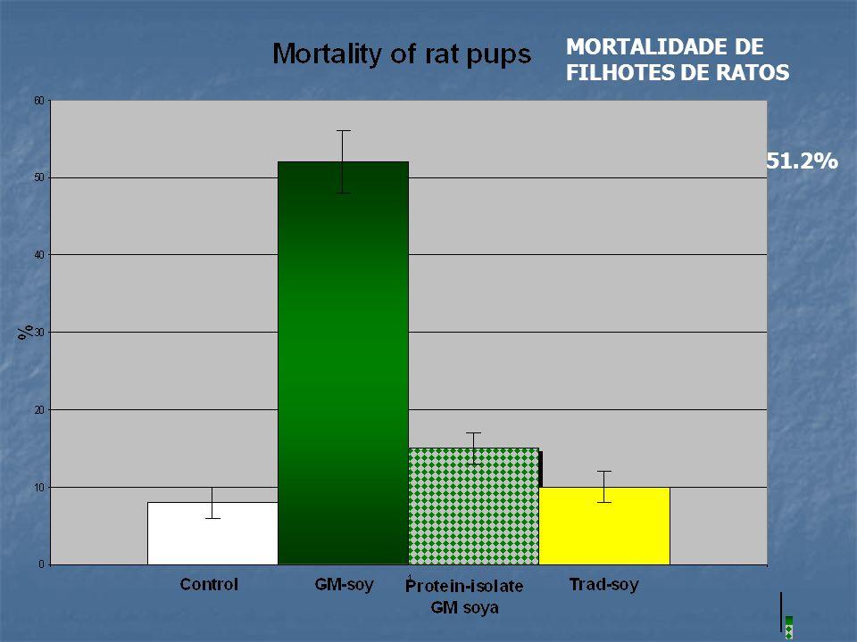 MORTALIDADE DE FILHOTES DE RATOS 51.2%