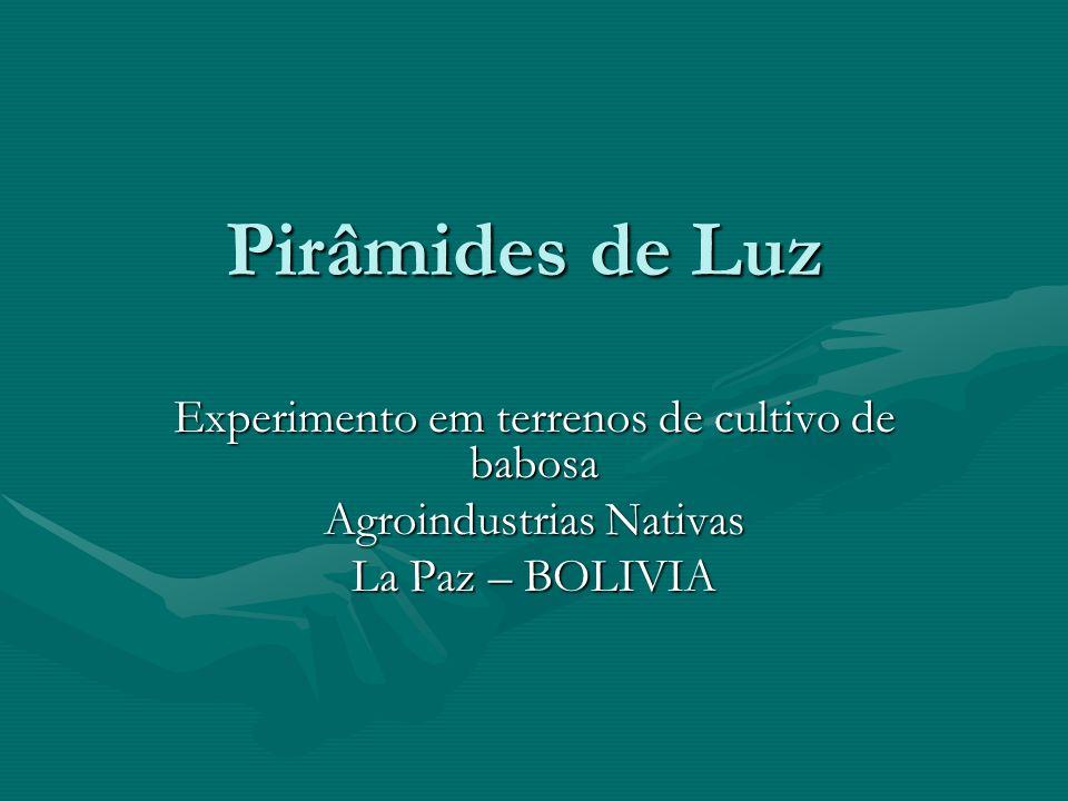 Pirâmides de Luz Experimento em terrenos de cultivo de babosa Agroindustrias Nativas La Paz – BOLIVIA