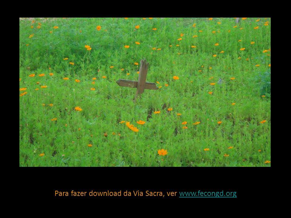 Para fazer download da Via Sacra, ver www.fecongd.orgwww.fecongd.org
