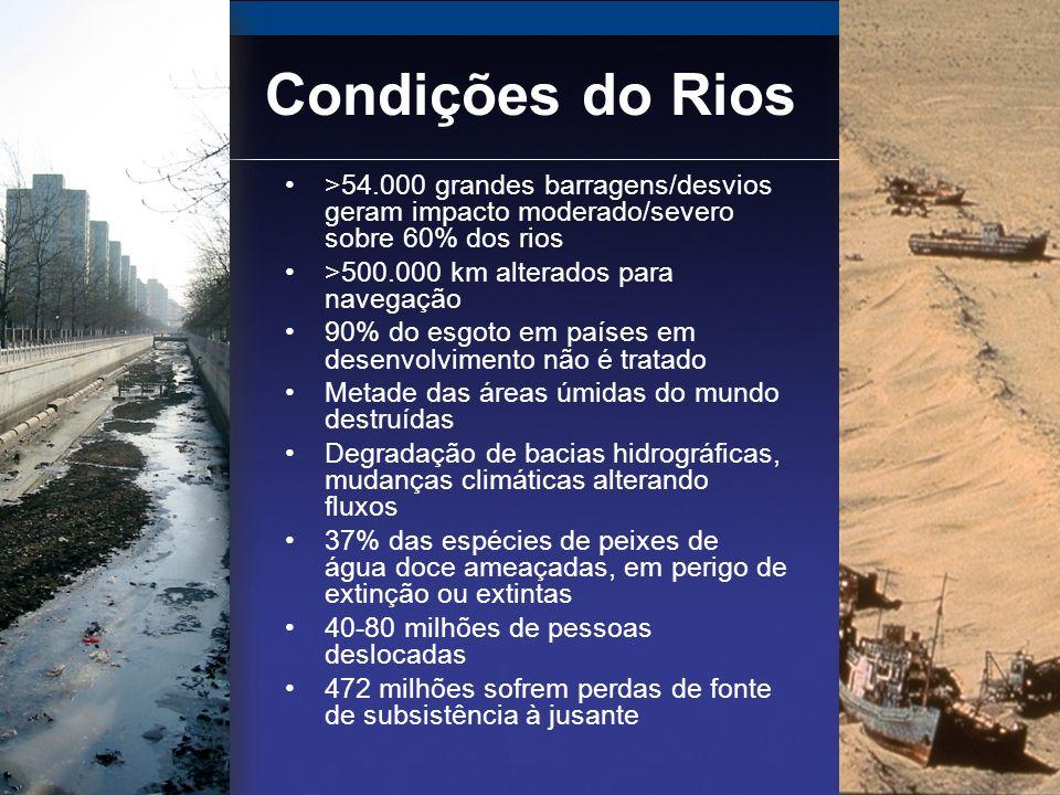 Impacto das Barragens Impactos à jusante Redução da biodiversidade; má qualidade da água; menor produção da lavoura; declínio da população de peixes Barragem Bloqueio da migração dos peixes; alteração do fluxo de sedimentos e da água; perigos das barragens antigas Reservatório Contribui para o aquecimento global; desloca comunidades; aumenta a incidência de doenças transmitidas pela água; desencadeia terremotos