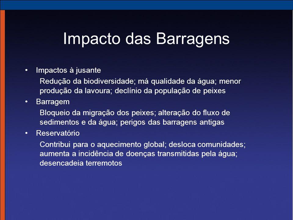 Impacto das Barragens Impactos à jusante Redução da biodiversidade; má qualidade da água; menor produção da lavoura; declínio da população de peixes B