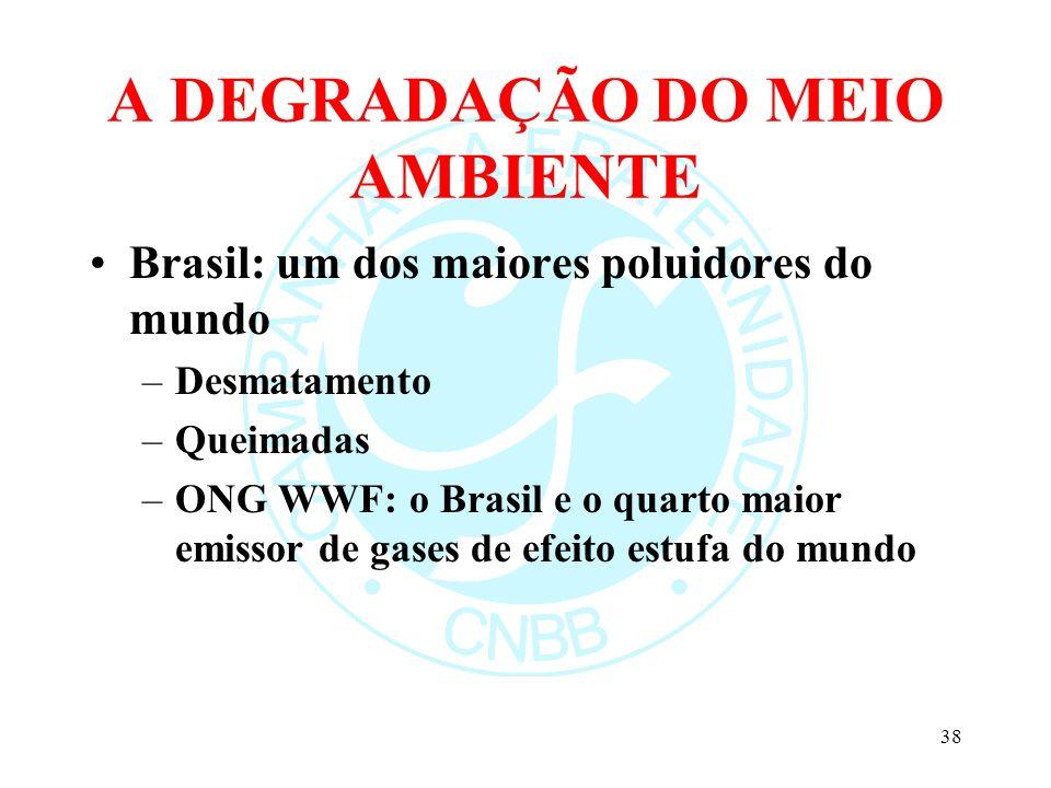 A DEGRADAÇÃO DO MEIO AMBIENTE Brasil: um dos maiores poluidores do mundo –Desmatamento –Queimadas –ONG WWF: o Brasil e o quarto maior emissor de gases
