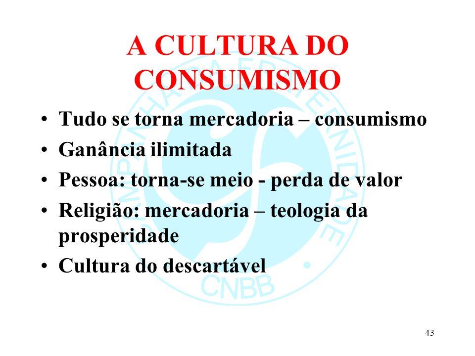 A CULTURA DO CONSUMISMO Tudo se torna mercadoria – consumismo Ganância ilimitada Pessoa: torna-se meio - perda de valor Religião: mercadoria – teologi