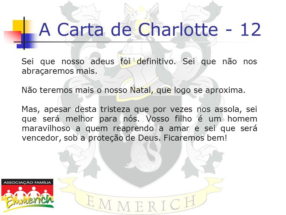 A Carta de Charlotte - 12 Sei que nosso adeus foi definitivo. Sei que não nos abraçaremos mais. Não teremos mais o nosso Natal, que logo se aproxima.