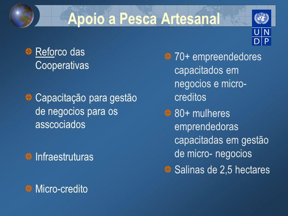 Apoio a Pesca Artesanal Reforco das Cooperativas Capacitação para gestão de negocios para os asscociados Infraestruturas Micro-credito 70+ empreendedo