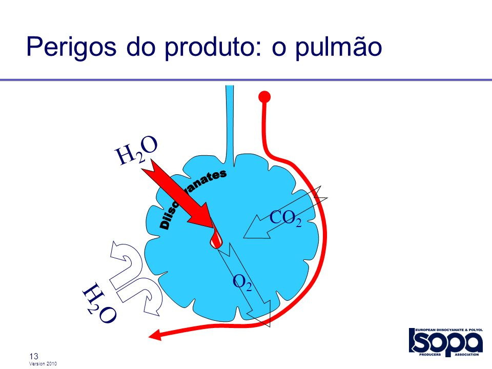 Version 2010 13 Perigos do produto: o pulmão CO 2 O2O2 H2OH2O H2OH2O