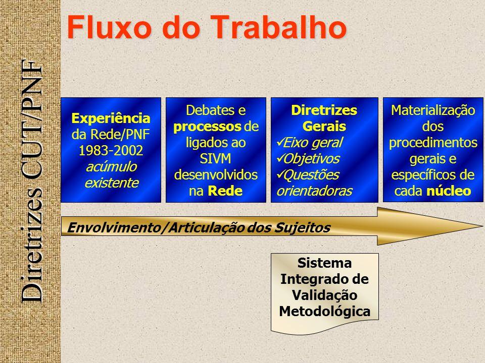 Diretrizes CUT/PNF Fluxo do Trabalho Envolvimento/Articulação dos Sujeitos Experiência da Rede/PNF 1983-2002 acúmulo existente Debates e processos de