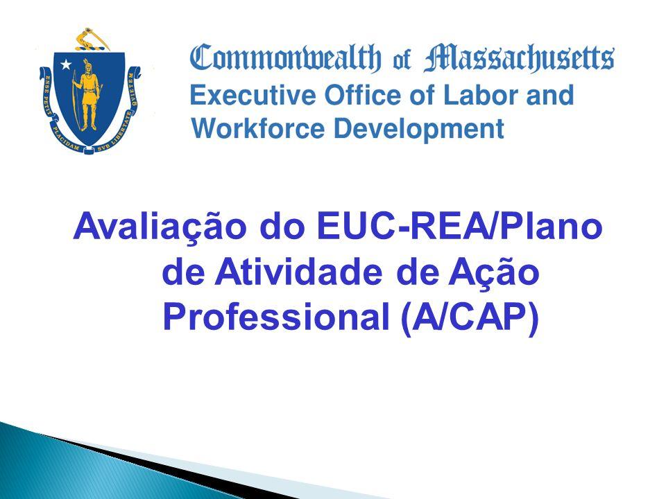 Avaliação do EUC-REA/Plano de Atividade de Ação Professional (A/CAP)