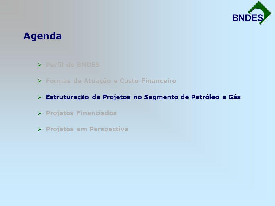 Agenda Fortalecimento da Infra-Estrutura BNDES Perfil do BNDES Formas de Atuação e Custo Financeiro Estruturação de Projetos no Segmento de Petróleo e
