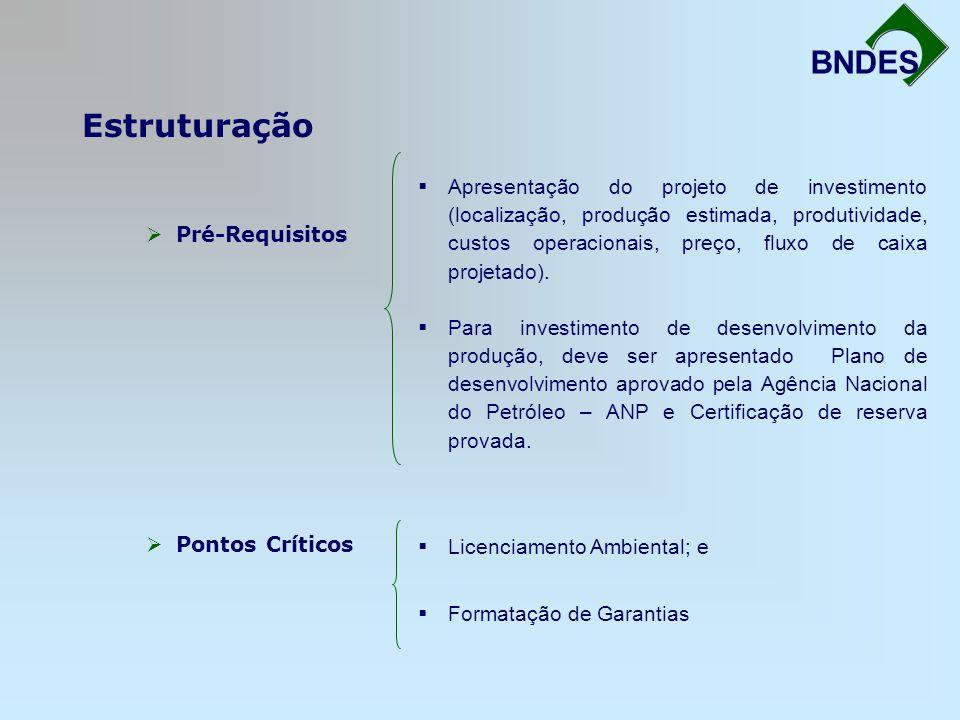 Estruturação Fortalecimento da Infra-Estrutura BNDES Pré-Requisitos Pontos Críticos Apresentação do projeto de investimento (localização, produção est