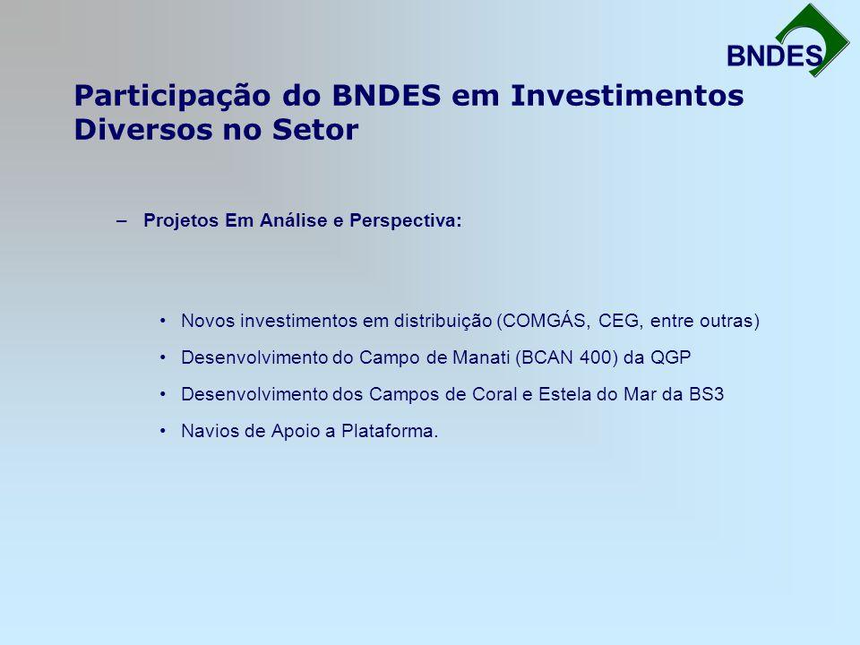 Participação do BNDES em Investimentos Diversos no Setor Fortalecimento da Infra-Estrutura BNDES –Projetos Em Análise e Perspectiva: Novos investiment