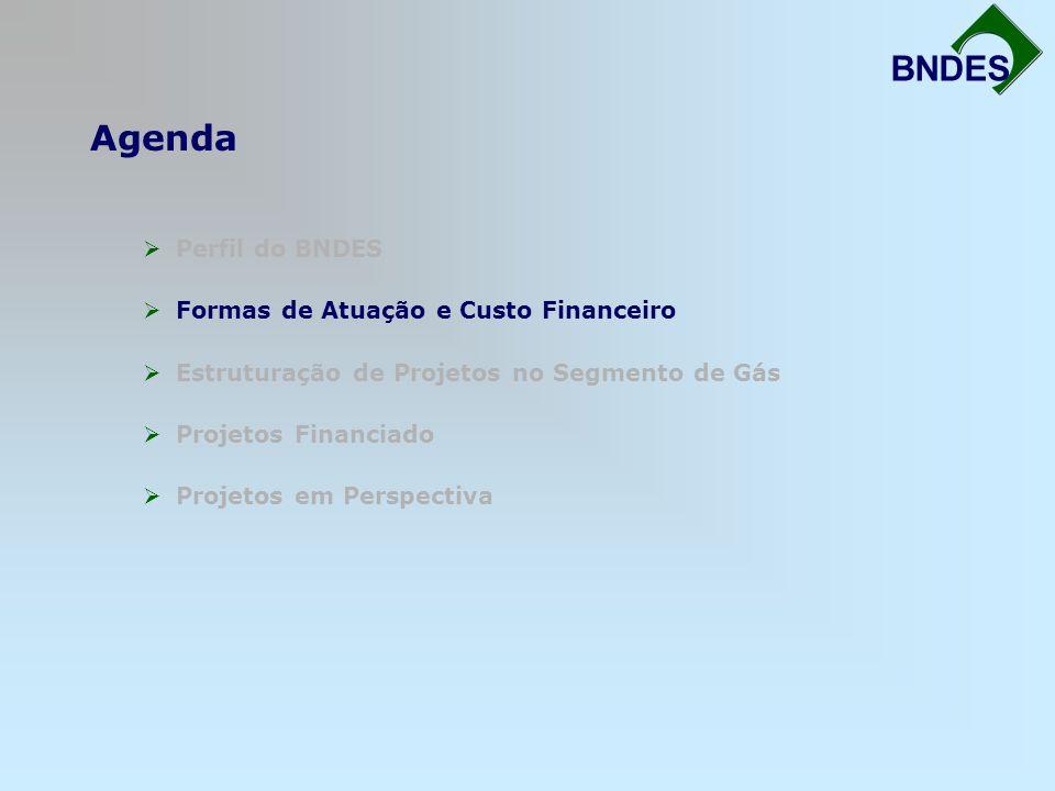 Agenda Fortalecimento da Infra-Estrutura BNDES Perfil do BNDES Formas de Atuação e Custo Financeiro Estruturação de Projetos no Segmento de Gás Projet