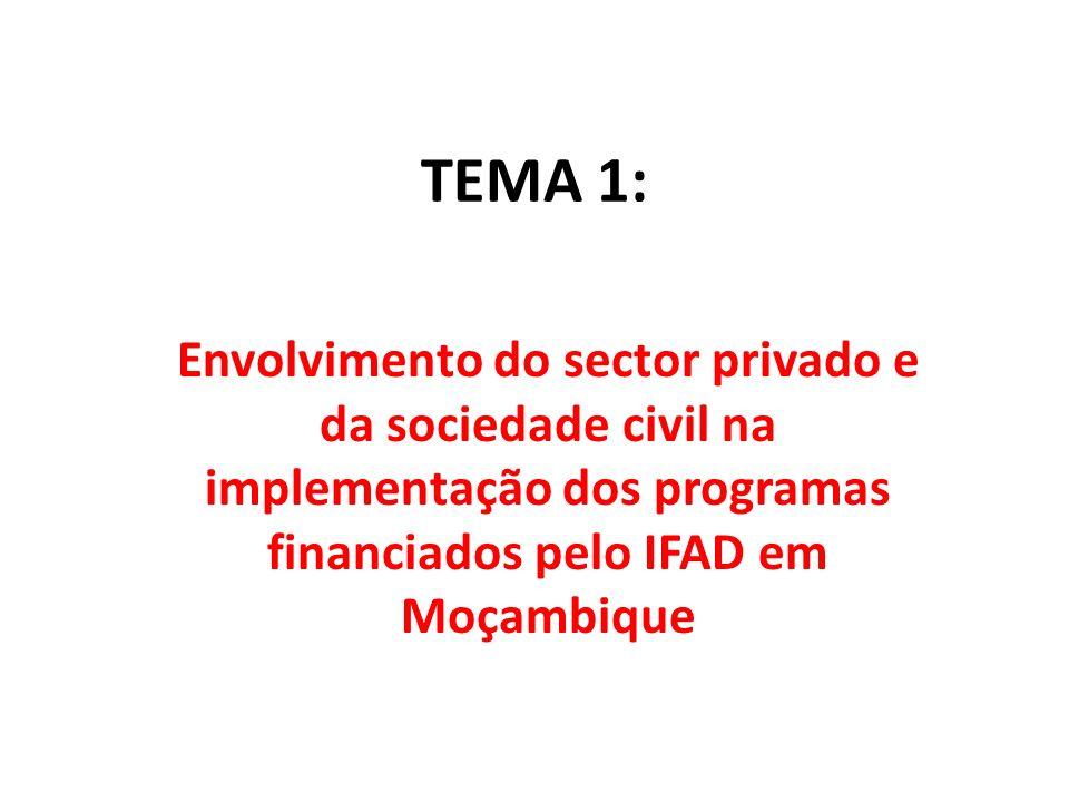 TEMA 1: Envolvimento do sector privado e da sociedade civil na implementação dos programas financiados pelo IFAD em Moçambique
