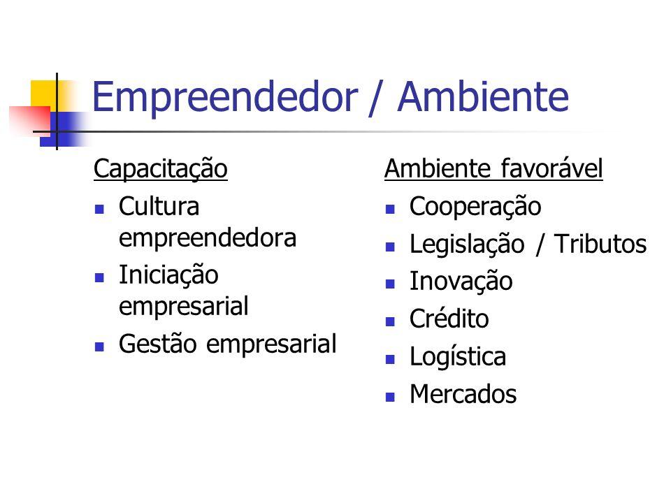 Empreendedor / Ambiente Objetivo Construir um ambiente favorável para a competitividade e a sustentabilidade das MPEs