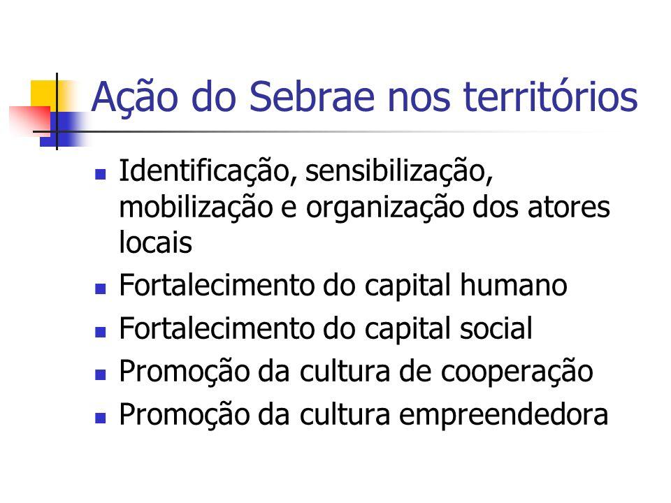 Ação do Sebrae nos territórios Capacitação de lideranças Identificação dos ativos locais Construção de uma visão de futuro compartilhada Capacitação em planejamento participativo e gestão compartilhada