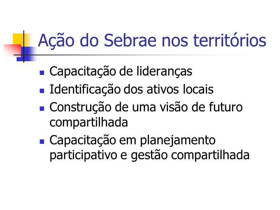 Ação do Sebrae nos territórios Capacitação em elaboração, negociação e gestão de projetos Capacitação em atração de investimentos e captação de recursos Apoio ao empreendedorismo local (iniciação empresarial, gestão empresarial e acesso ao crédito)
