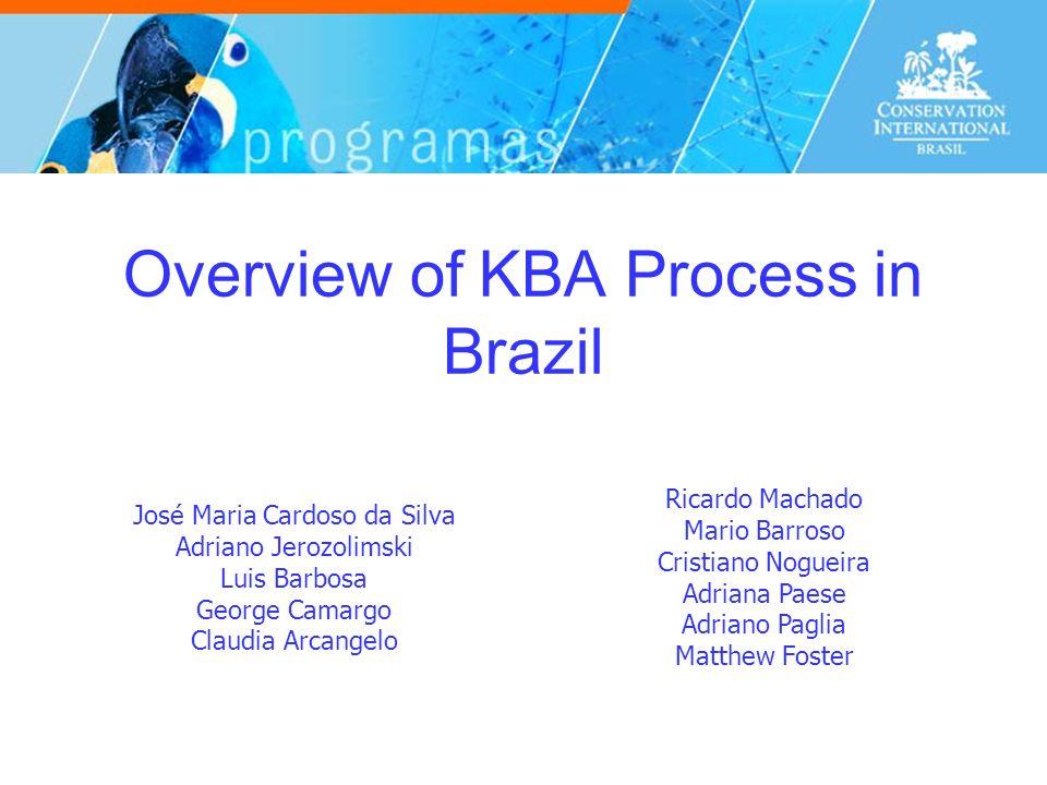 Overview of KBA Process in Brazil José Maria Cardoso da Silva Adriano Jerozolimski Luis Barbosa George Camargo Claudia Arcangelo Ricardo Machado Mario