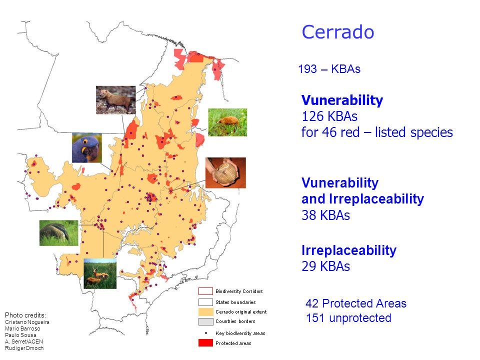Cerrado Vunerability 126 KBAs for 46 red – listed species Vunerability and Irreplaceability 38 KBAs Irreplaceability 29 KBAs 193 – KBAs Photo credits: