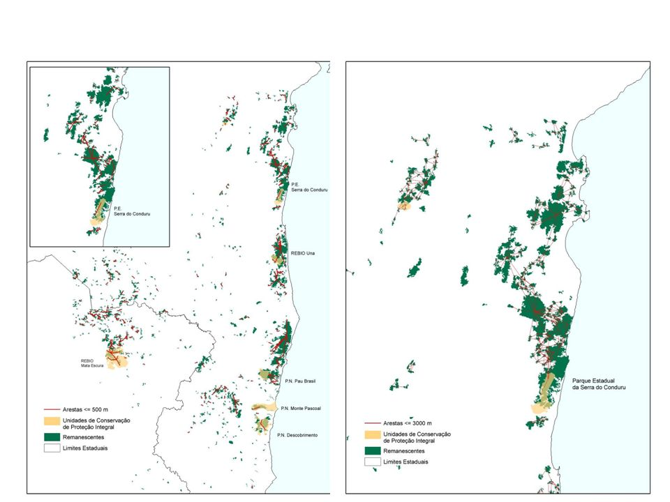 Delineation issues – Wilderness areas Causes of species spatial and temporal patterns Pantanal: flood pulses