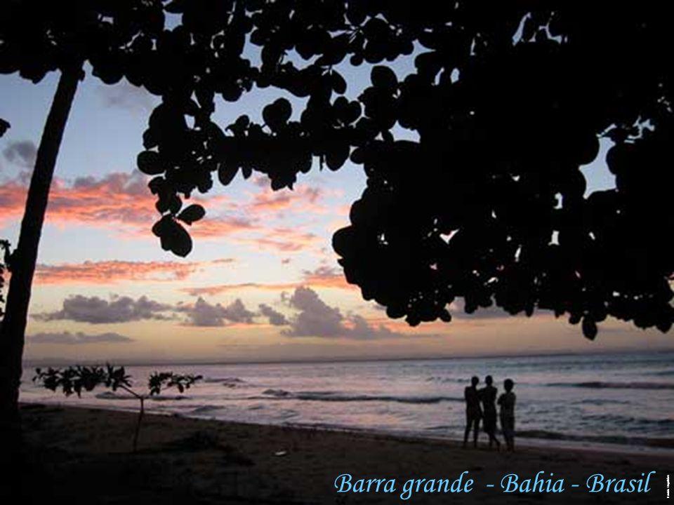 Haroldo Magalhães Barra grande - Bahia - Brasil