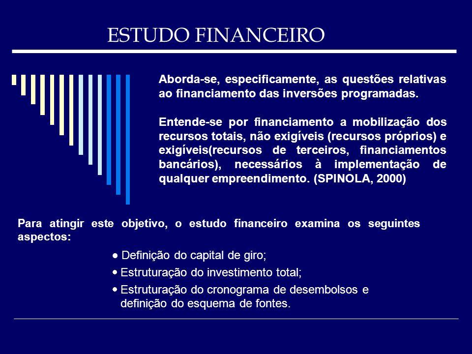 ESTUDO FINANCEIRO Para atingir este objetivo, o estudo financeiro examina os seguintes aspectos: Definição do capital de giro; Estruturação do investi