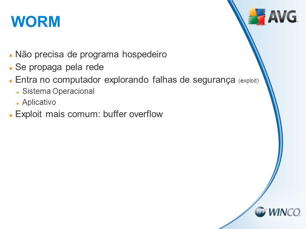 Não precisa de programa hospedeiro Se propaga pela rede Entra no computador explorando falhas de segurança (exploit) Sistema Operacional Aplicativo Ex