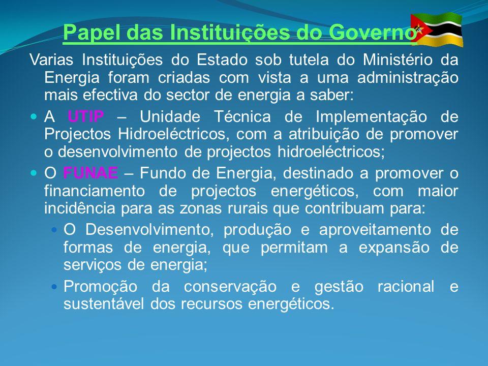 Papel das Instituições do Governo Varias Instituições do Estado sob tutela do Ministério da Energia foram criadas com vista a uma administração mais e